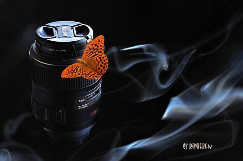 """il mio Micro 105 detto """"Libellula""""  --  My Micro 105 nicknamed Dragonfly"""