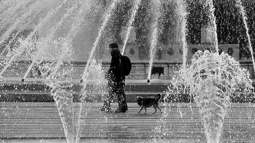 Piazza De Ferrari - la fontana
